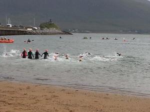 kingdom swimmers